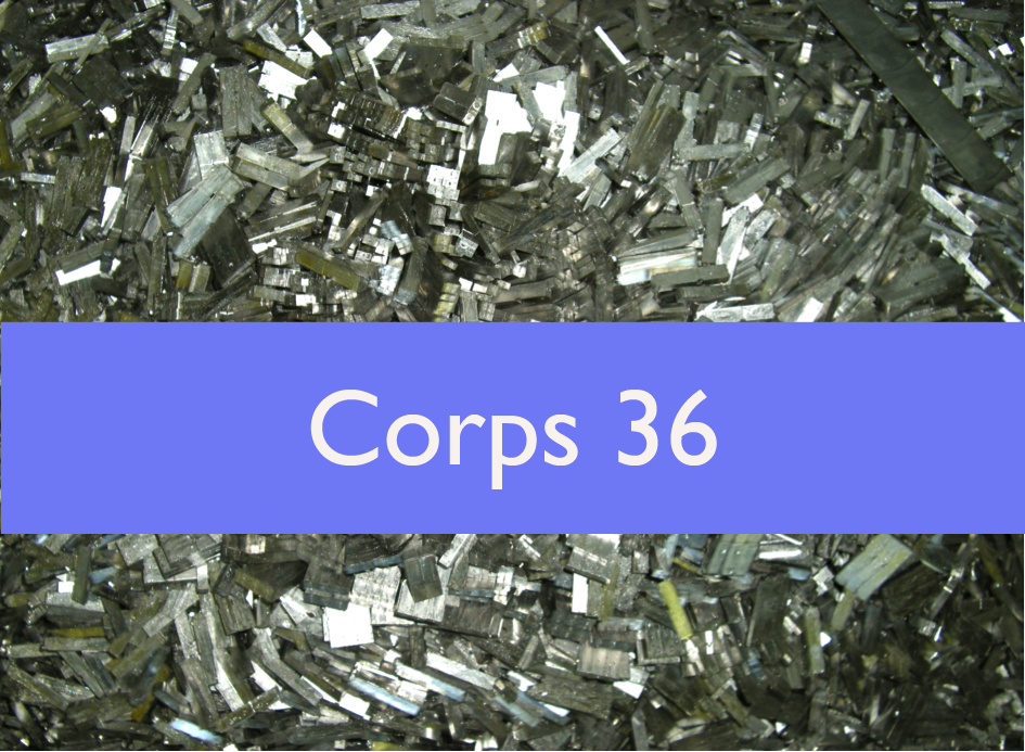 Corps 36