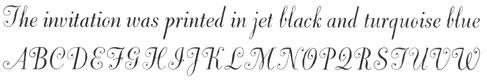 436-Dorchester-script